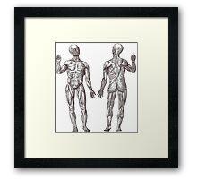Muscle Men Fitness Addict Framed Print