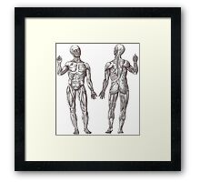 Muscle Men Fitness Addict Framed Print