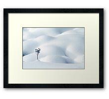 Little Snow Flower Framed Print