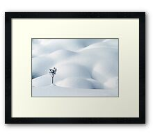 Little Snow Flower Framed Print