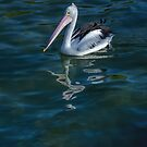 Pelican at the Port by Jan Pudney