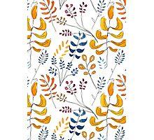 Natural Watercolour Photographic Print
