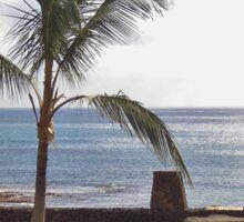 Beach And Rocks, Canary Islands Sticker