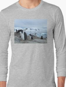 In a Flap Long Sleeve T-Shirt