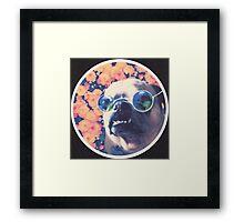 The Grooviest Pug on Earth Framed Print