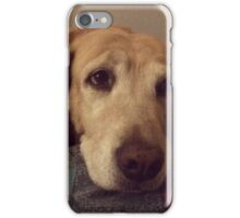 Gracie the Lab Retriever 2 iPhone Case/Skin