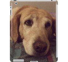 Gracie the Lab Retriever 2 iPad Case/Skin