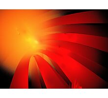 Red Daisy Photographic Print