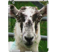 The Prisoner - Cheviot Sheep iPad Case/Skin