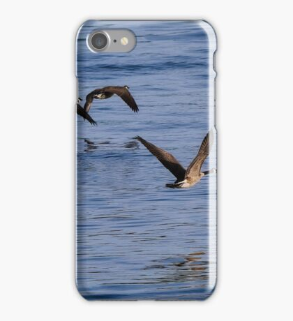 Geese Flying iPhone Case/Skin
