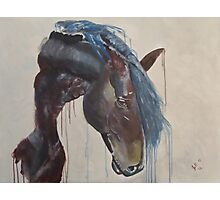 Horse in the Abstract - Original acrylic painting Photographic Print