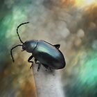 ©NS Beetle Black IA by OmarHernandez