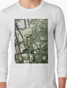 Rose In The  Greenery ........ Long Sleeve T-Shirt