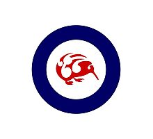 Kiwi Air Force Roundel Photographic Print