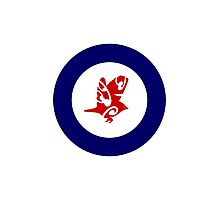 Silvereye Air Force Roundel Photographic Print