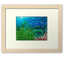 Green Sea Dragon Framed Print