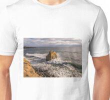 Bird Rock at Sunset Unisex T-Shirt