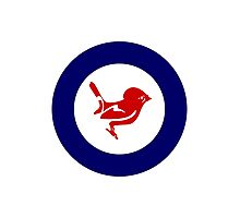 Tomtit Air Force Roundel Photographic Print