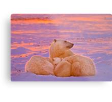 Polar family sunset Metal Print