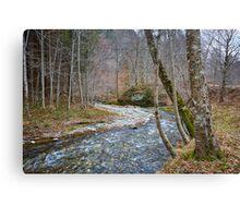 River flowing through mountain Canvas Print