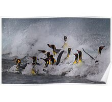 King Penguin Arrival Poster
