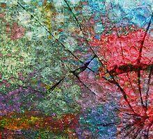 Broken Dreams by Scott Mitchell