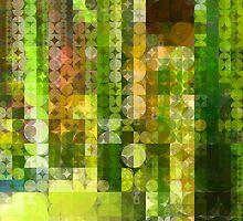 Cactus Garden Abstract Circles 2 by Christopher Johnson