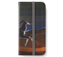 In the desert iPhone Wallet/Case/Skin