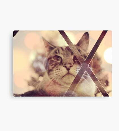 Cat outside Canvas Print