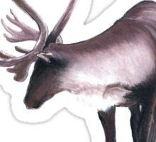 Lone Caribou Sticker