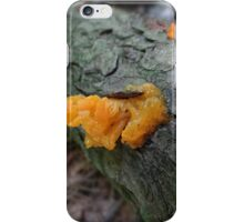 Witch's Butter iPhone Case/Skin