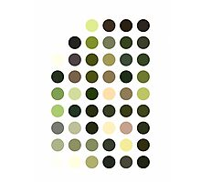 Cactus Garden Dots Photographic Print