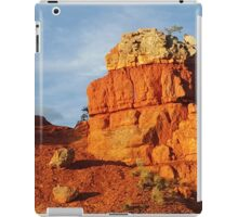 Red Canon iPad Case/Skin