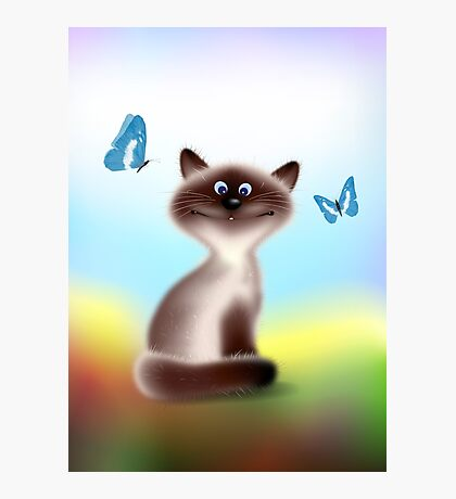 Sly Himalayan Cat & Butterflies Photographic Print