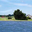 Patuxent River Farm by Eileen McVey