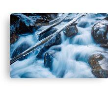 Frozen creek in winter Metal Print