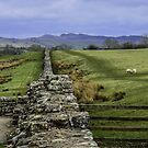 Hadrian's Wall by mcstory