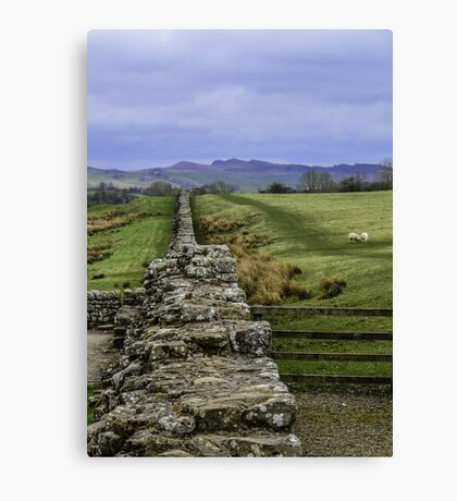 Hadrian's Wall Canvas Print