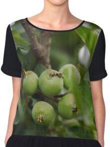 Green unripe apples Chiffon Top