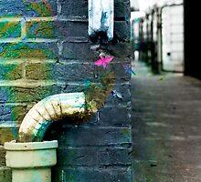 Pipe Dreams by NeLLaStEEz