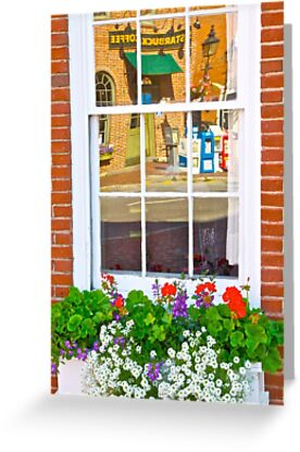 Window Box and Reflection by John Butler