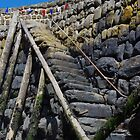 Harbour Steps, Clovelly by lezvee