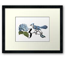 Bluebird Vintage Floral Initial Z Framed Print