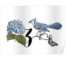 Bluebird Vintage Floral Initial Z Poster