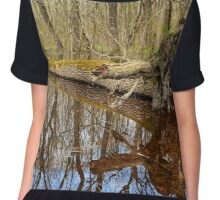 Hornbeam forest and swamp Chiffon Top