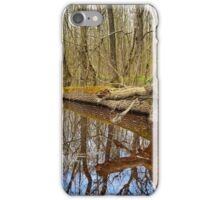 Hornbeam forest and swamp iPhone Case/Skin