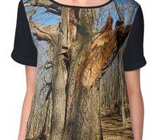 Huge oak tree Chiffon Top