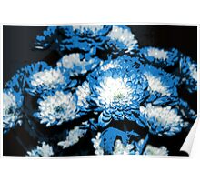 Blue and White Floral Poster