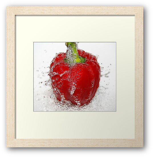 red pepper by Ingrid Beddoes