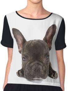 Portrait of a cute French Bulldog Chiffon Top